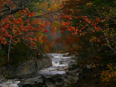 Autumn Colors Along The Swift RIver in Coos Canyon