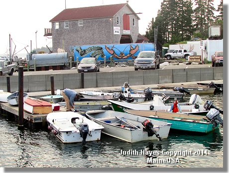 Port Clyde, Maine - boats and more boats
